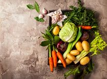 Ingredientes frescos do vegetal cru Foto de Stock