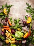 Ingredientes frescos do vegetal cru Fotos de Stock