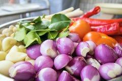 Ingredientes frescos para cocinar el primer de la salsa de curry del pollo Fotografía de archivo libre de regalías