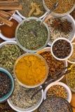Ingredientes - hierbas y especias secadas Foto de archivo libre de regalías