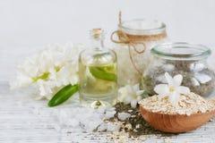 Ingredientes naturais para a máscara caseiro do facial e do corpo Imagens de Stock