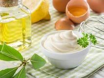 Ingredientes naturales de la mayonesa Fotografía de archivo libre de regalías