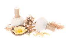 Ingredientes naturales del balneario La bola herbaria de la compresa e ingredien imagenes de archivo