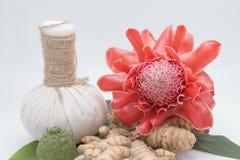 Ingredientes naturales del balneario La ginebra herbaria de la bola y de la antorcha de la compresa fotos de archivo libres de regalías
