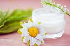 Ingredientes naturales para los productos de los cosméticos Foto de archivo libre de regalías