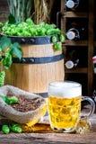 Ingredientes necesarios para la cerveza fresca Foto de archivo libre de regalías