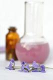 Ingredientes para el balneario y el masaje Imagenes de archivo