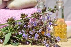 Ingredientes para el balneario y el masaje Imagen de archivo libre de regalías