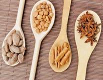Ingredientes para el chocolate, granos de cacao, canela, anís, habas del albaricoque en las cucharas de madera foto de archivo