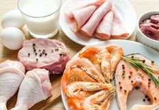 Ingredientes para la dieta de la proteína Imagen de archivo libre de regalías