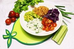 Ingredientes para la ensalada de la mezcla de salmones y de verduras Imágenes de archivo libres de regalías