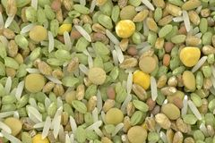 Ingredientes para la mezcla de sopa Imagen de archivo