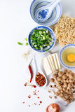 Ingredientes para la sopa asiática de los ramen Fotografía de archivo