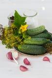 Ingredientes para los pepinos de conserva en vinagre Fotos de archivo libres de regalías