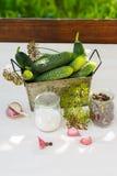 Ingredientes para los pepinos de conserva en vinagre, verticales Imágenes de archivo libres de regalías