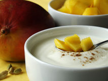 Ingredientes para mezclar el mango Lassi Imagen de archivo libre de regalías