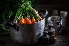 Ingredientes para o caldo caseiro com cenouras, salsa e alho-porro Imagem de Stock Royalty Free