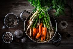 Ingredientes para o caldo saboroso com cenouras, salsa e alho-porro Imagem de Stock