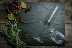 Ingredientes para o cocktail do arando Fotografia de Stock
