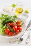 Ingredientes para a salada fresca com tomates imagem de stock
