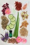 Ingredientes para Skincare e cuidado do corpo Imagens de Stock