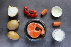 Ingredientes para a sopa dos peixes: salm?es, cebola, cenoura, batata, tomates de cereja, creme, azeite imagens de stock royalty free