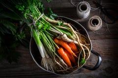 Ingredientes para a sopa saboroso do vegetariano com cenouras, salsa e alho-porro Imagem de Stock Royalty Free