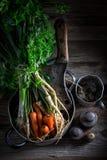 Ingredientes para a sopa saudável do vegetariano com cenouras, salsa e alho-porro Imagens de Stock Royalty Free