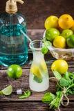 Ingredientes para um limão frio fresco da bebida Fotografia de Stock Royalty Free