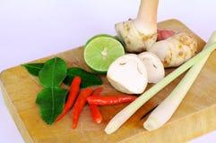 Ingredientes picantes da sopa de Tomyum Imagem de Stock