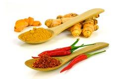 Ingredientes quentes e picantes Imagens de Stock
