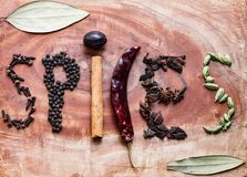 Ingredientes t?picos para gr?os de pimenta de um preto do masala do garam, macis, canela, cravos-da-?ndia, piment?es vermelhos se foto de stock royalty free
