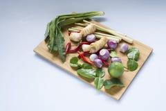 Ingredientes tailandeses Imagens de Stock