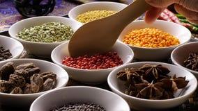 Ingredientes tailandeses das especiarias da erva ajustados foto de stock royalty free