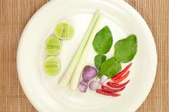 Ingredientes tailandeses del yum de tom Fotos de archivo libres de regalías