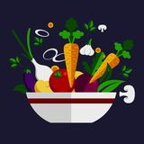 Ingredientes vegetais saudáveis frescos da cozinha ilustração royalty free