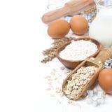 Ingredientes y moldes para las galletas de harina de avena que cuecen, aislados Foto de archivo libre de regalías