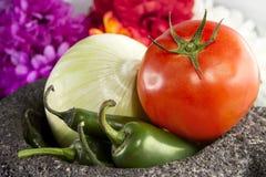 Ingredientes y mortero mexicanos de la salsa Fotos de archivo
