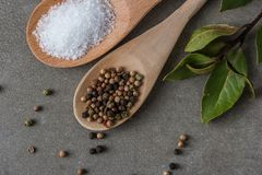 Ingredienti alimentari su fondo concreto Immagini Stock
