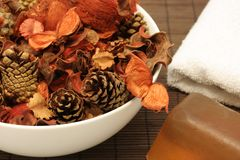 Ingredienti arancioni della stazione termale Immagine Stock