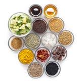 Ingredienti crudi per il sottaceto indiano del mango Immagini Stock