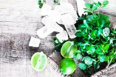 Ingredienti del cocktail di Mojito - la menta fresca, calce, ghiaccia di legno Immagini Stock
