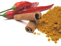 Ingredienti del curry Fotografia Stock Libera da Diritti