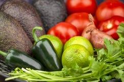 Ingredienti del guacamole Fotografia Stock Libera da Diritti