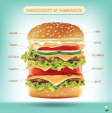 Ingredienti dell'hamburger Infographics di vettore fotografie stock libere da diritti