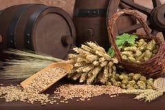 Ingredienti della birra Fotografia Stock Libera da Diritti
