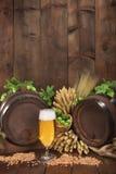 Ingredienti della birra Immagini Stock