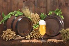 Ingredienti della birra Fotografia Stock