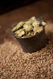 Ingredienti della birra del mestiere Immagini Stock Libere da Diritti
