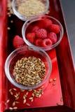Ingredienti della birra sul vassoio rosso Fotografia Stock